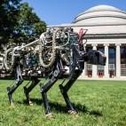 MIT-Cheetah-05
