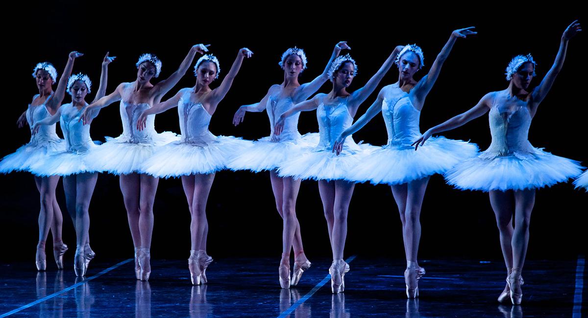 boston ballet swan lake main