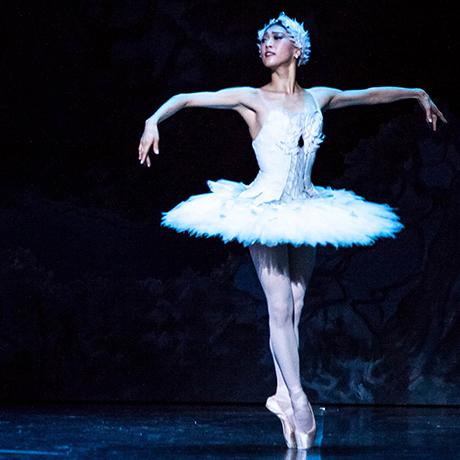 boston ballet swan lake sq