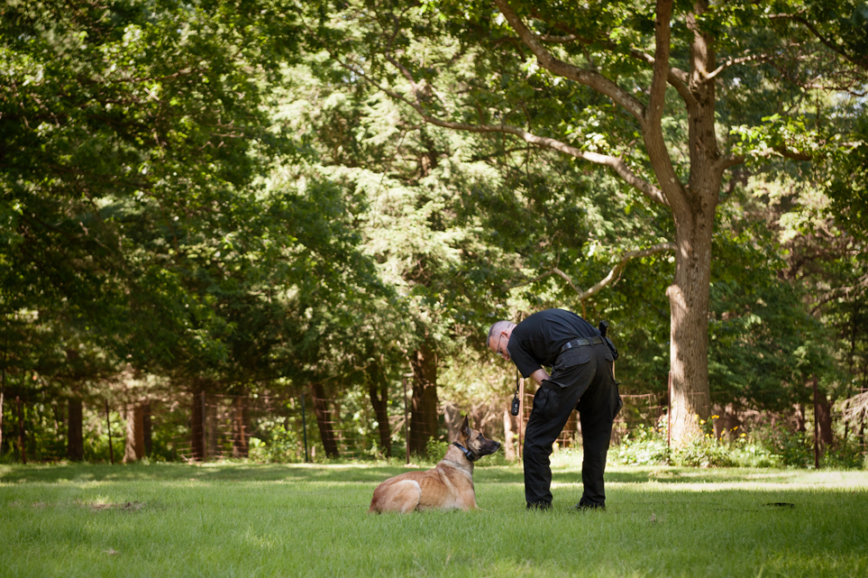 ace barnes, police dog