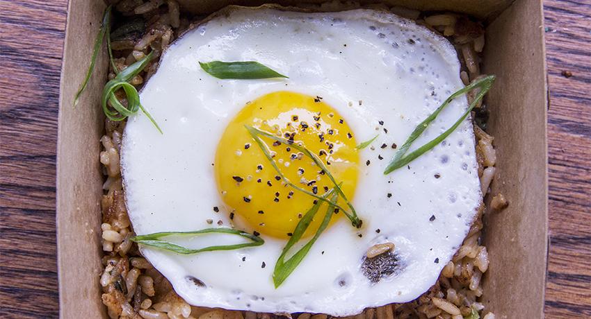 egg lead