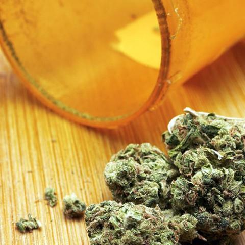 medical marijuana sq