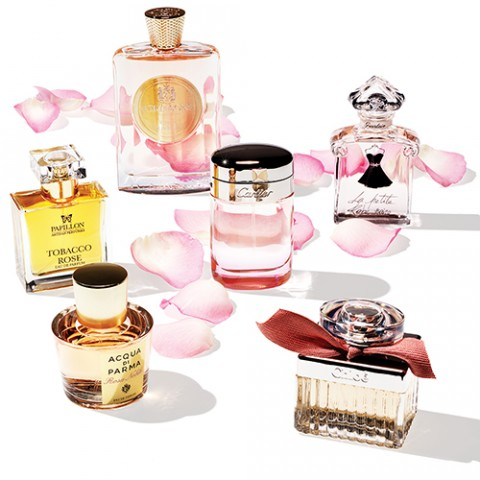 perfume sq