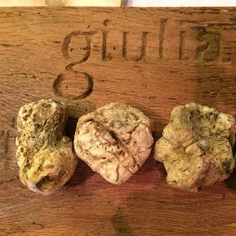 truffle sq2