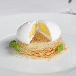 egg sq