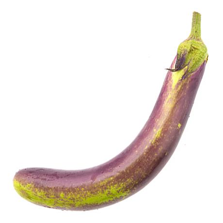 eggplant sq