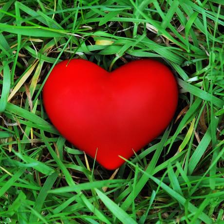 460 shutterstock red heart on the grass