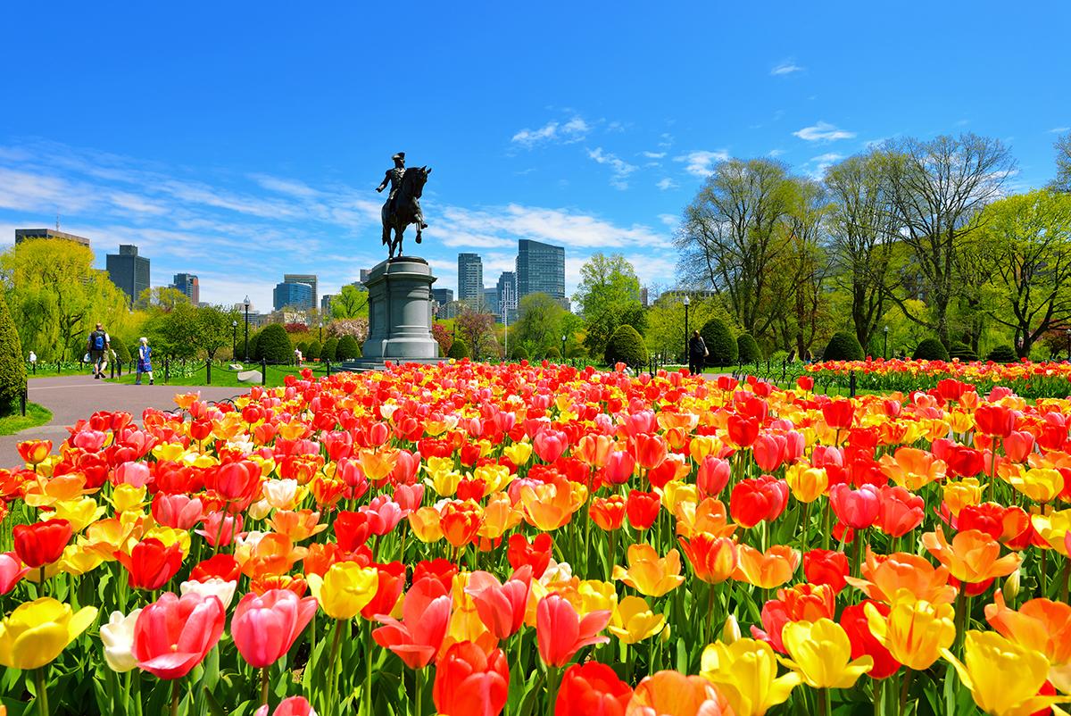 Boston Public Garden App Offers Interactive Tour