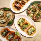 tacos sq