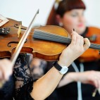 460 shutterstock_violins7