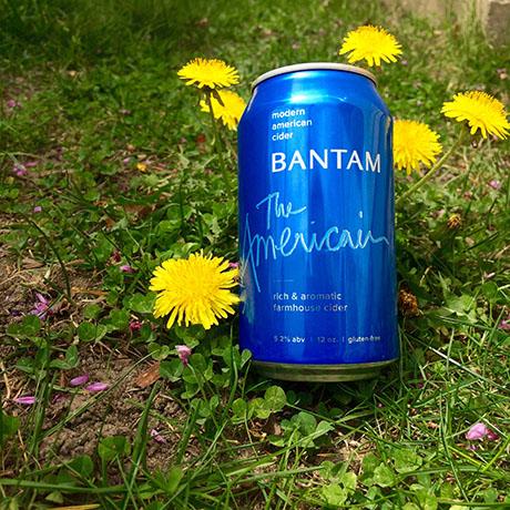Bantam's The Americain