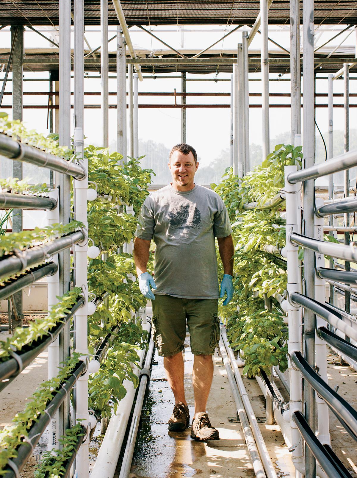 island grown initiative thimble farm