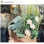 460 instagram