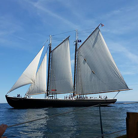 Maine Sail Freight