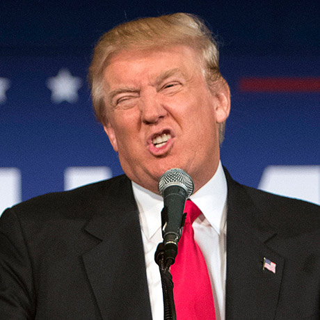 Donald Trump sq