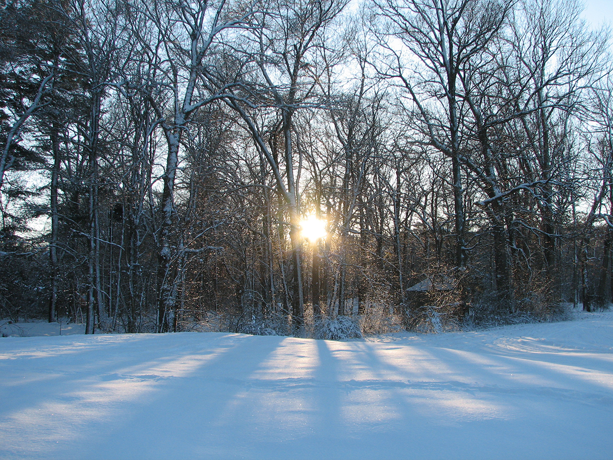 Sun setting at the Weston XC ski track by Elizabeth Lloyd via Flickr/Creative Commons