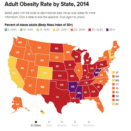 State of Obesity