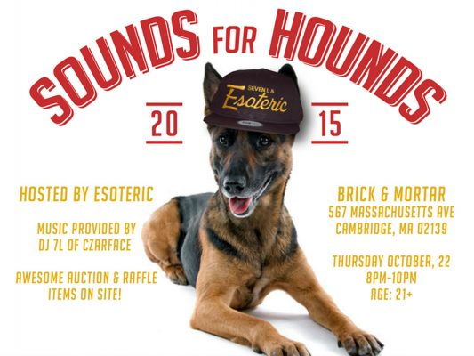 Sounds for Hounds