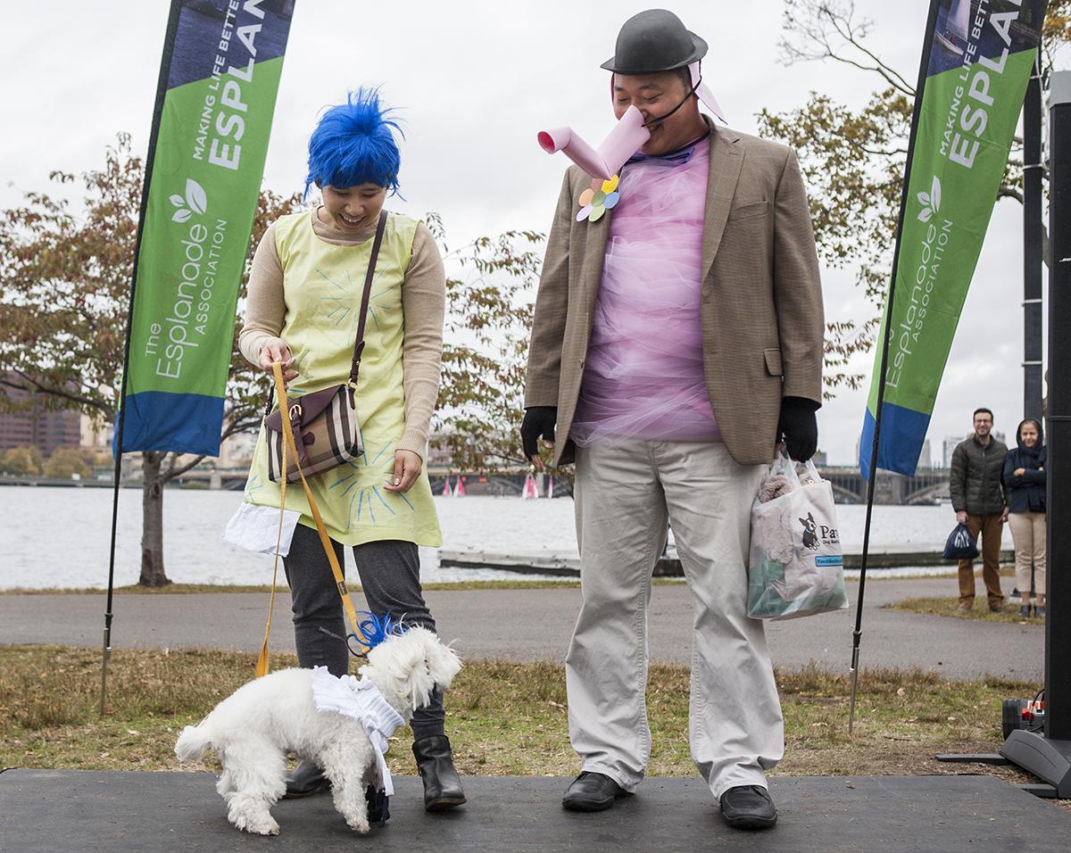canine promenade 2015