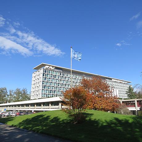 WHO headquarters square