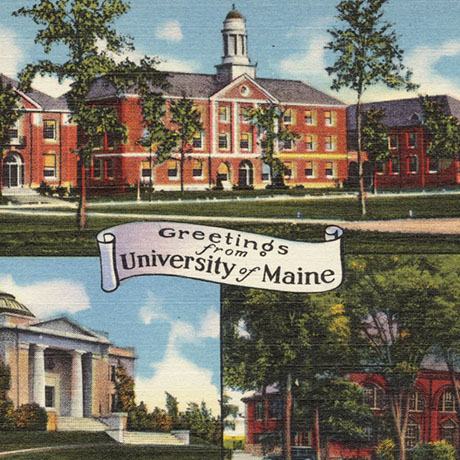 University of Maine sq