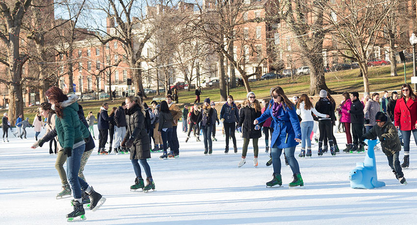 IceSkating2015_FrogPond_main