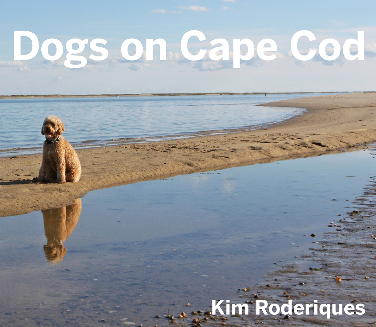 dogs on cape cod book cover