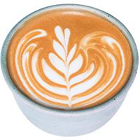 rosetta-latte-foam-design