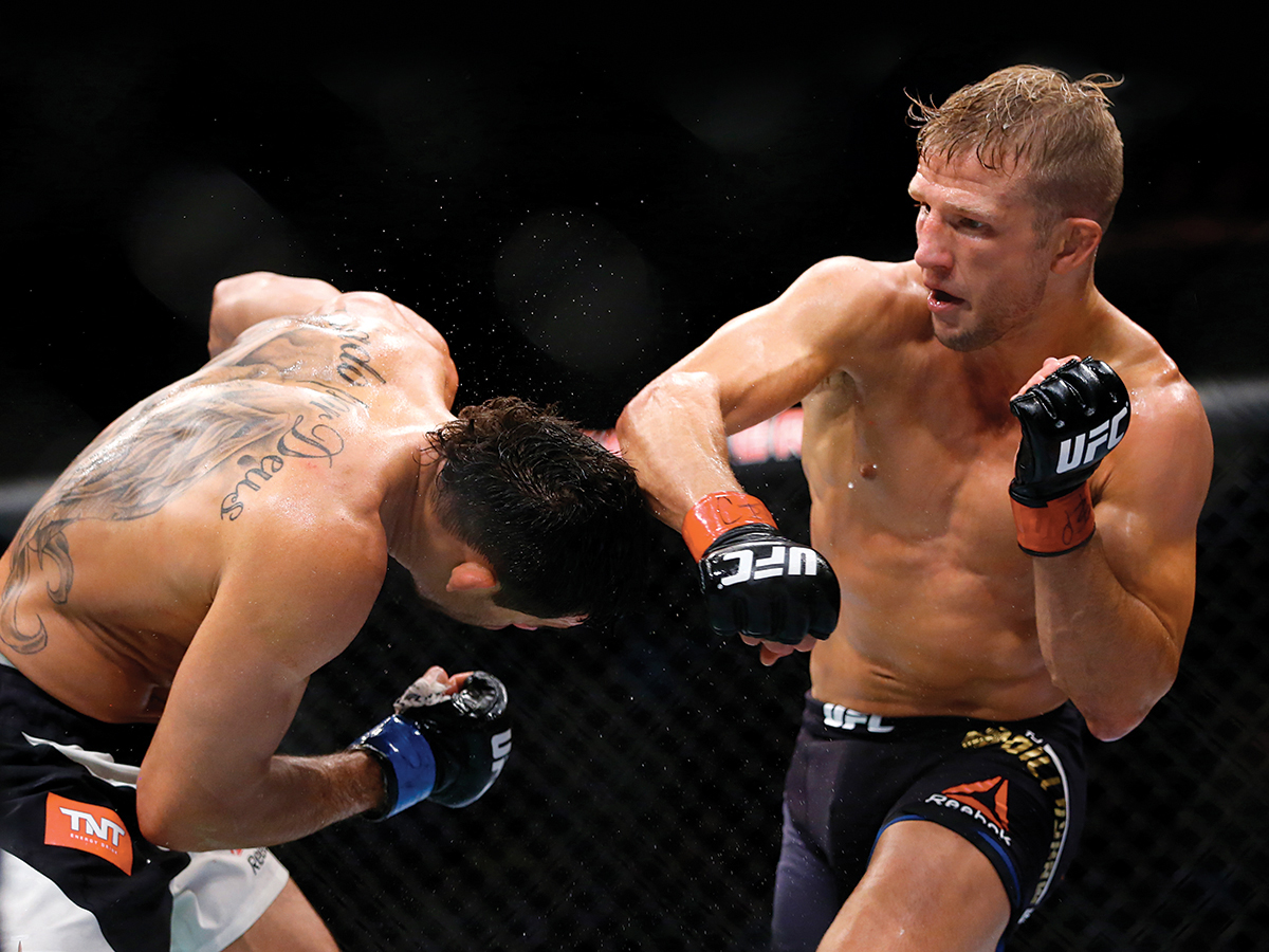 tj dillashaw dominick cruz ufc boston