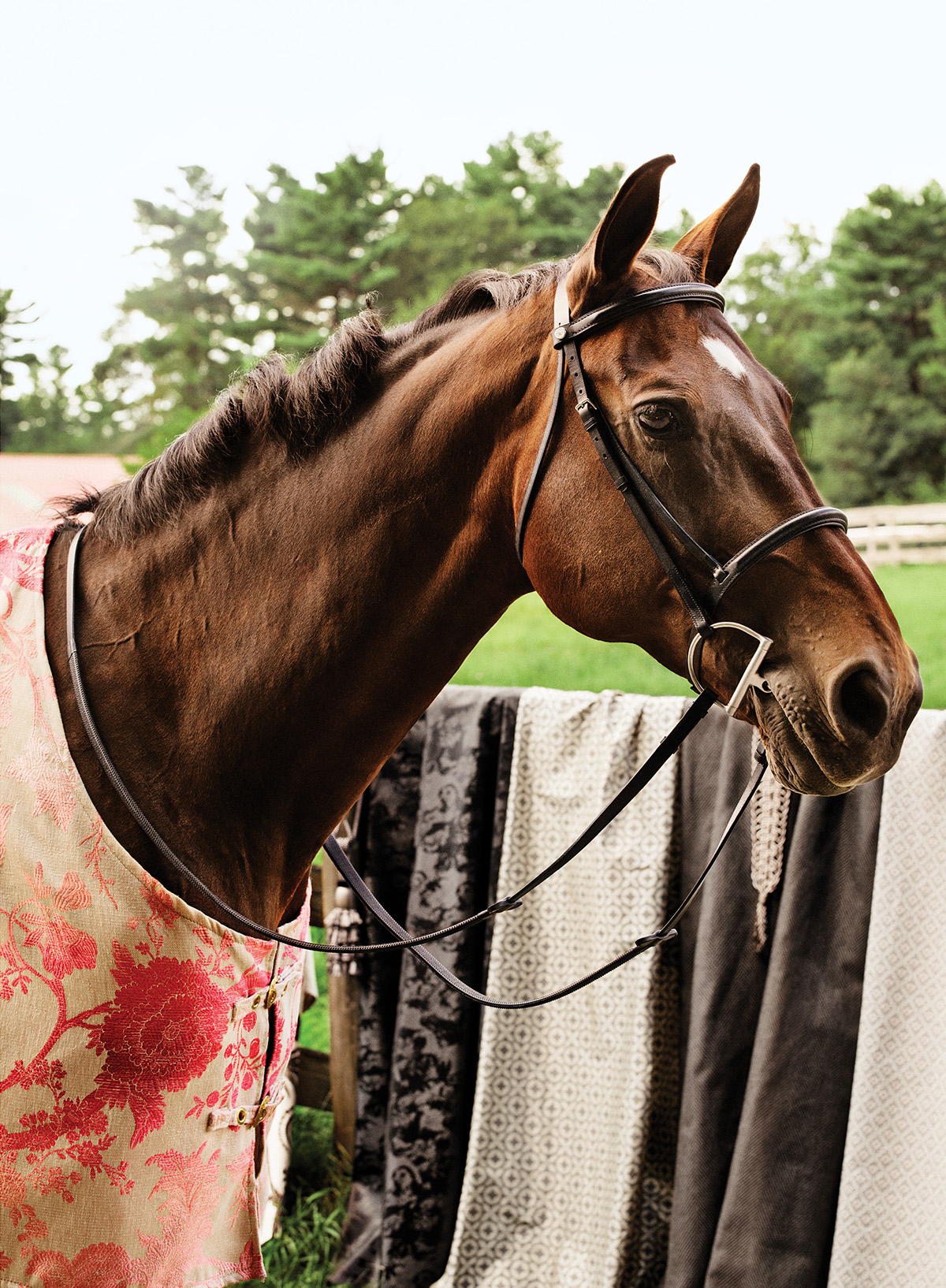 spring fabrics horses 2
