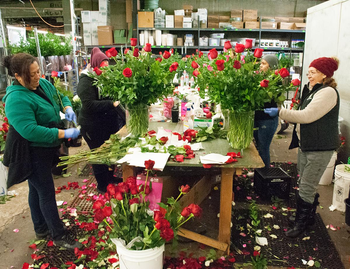 valentine's day winston flowers