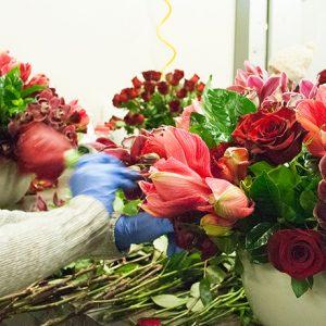 winston-flowers-sq