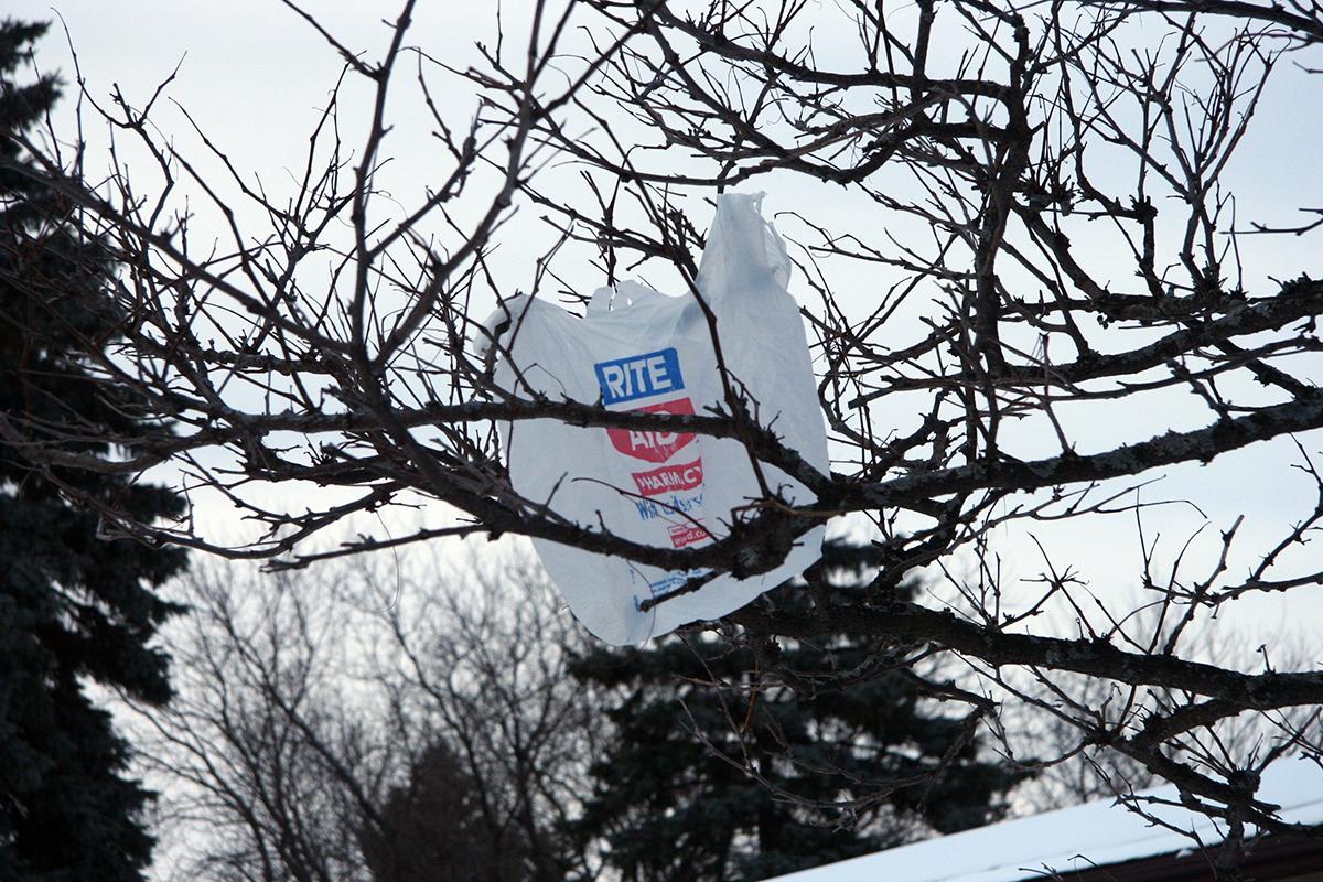 Plastic Bags Blow by Kate Ter Haar via Flickr/Creative Commons