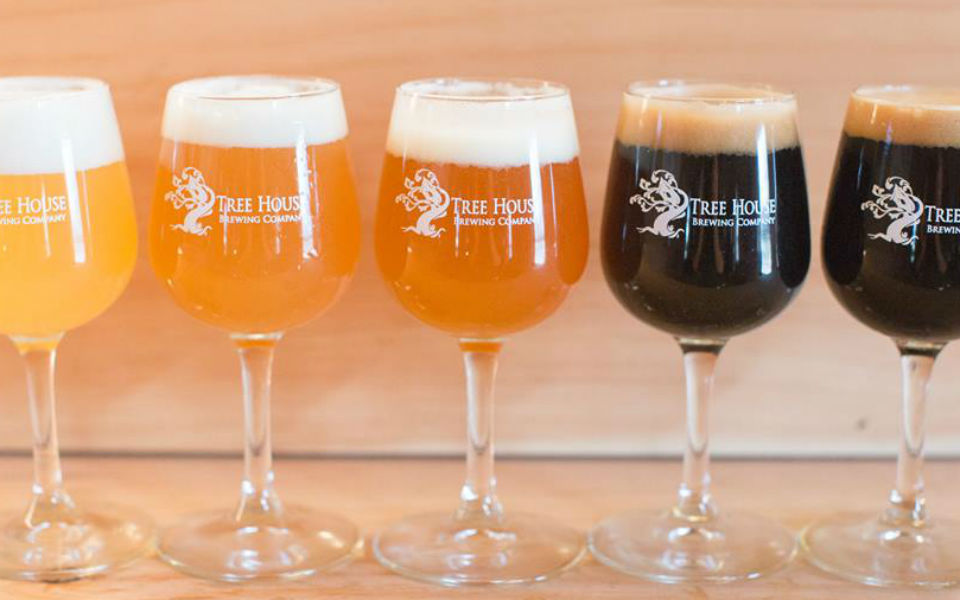 A rainbow of beers by Tree House Brewing