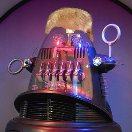 Donald Trump bot sq