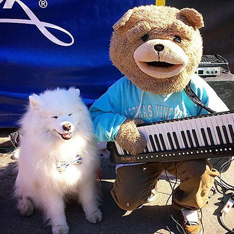 keytar bear with dog sq