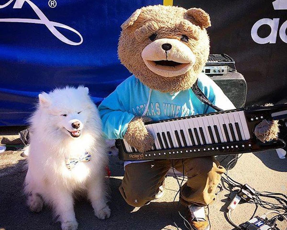 keytar bear with dog