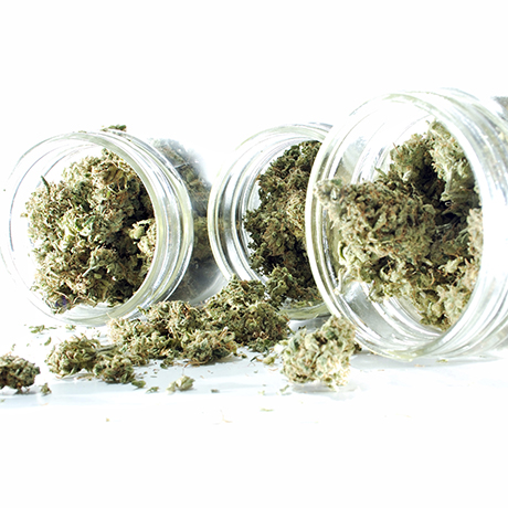 medical marijuana massachusetts sq