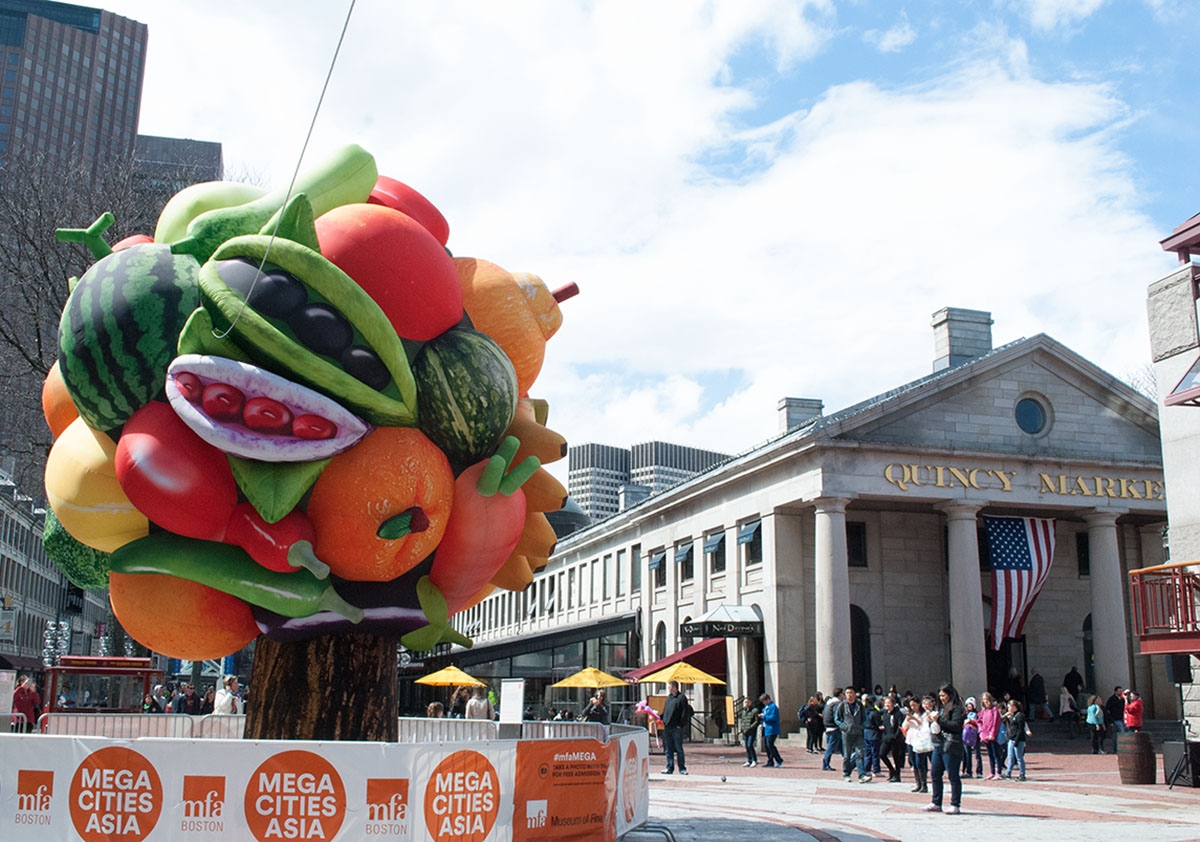 mfa boston fruit tree
