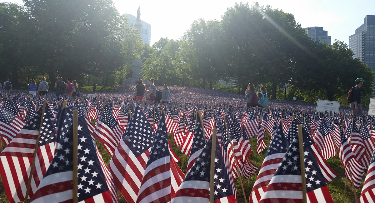memorial day flags boston common 2016 side