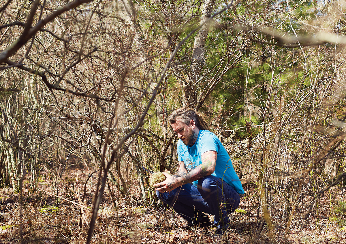 Brandon Baltzley forages for reindeer lichen and oysters around Waquoit Bay