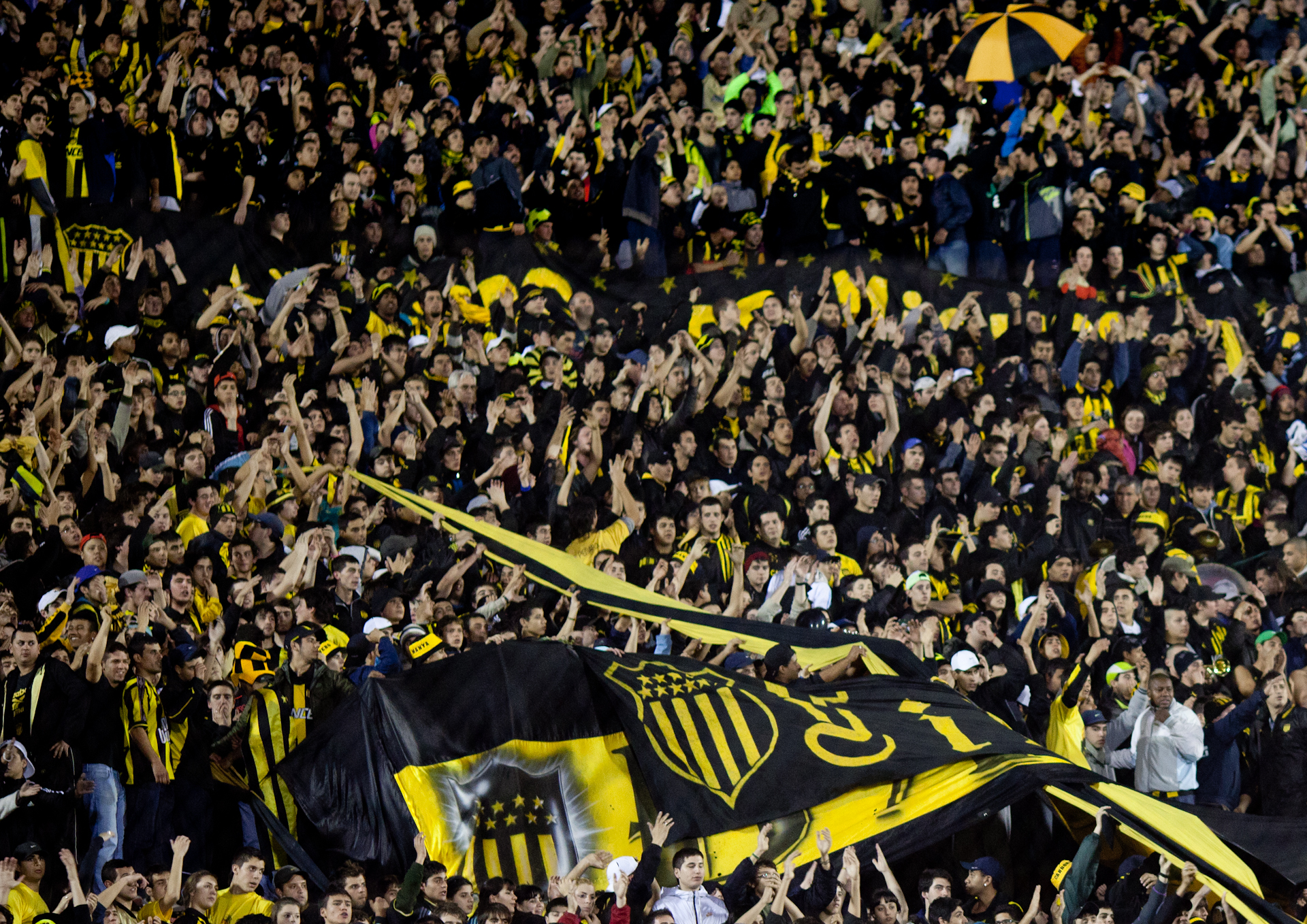 Copa Libertadores de America 2011. / Photo via Jimmy Baikovicius, Flickr