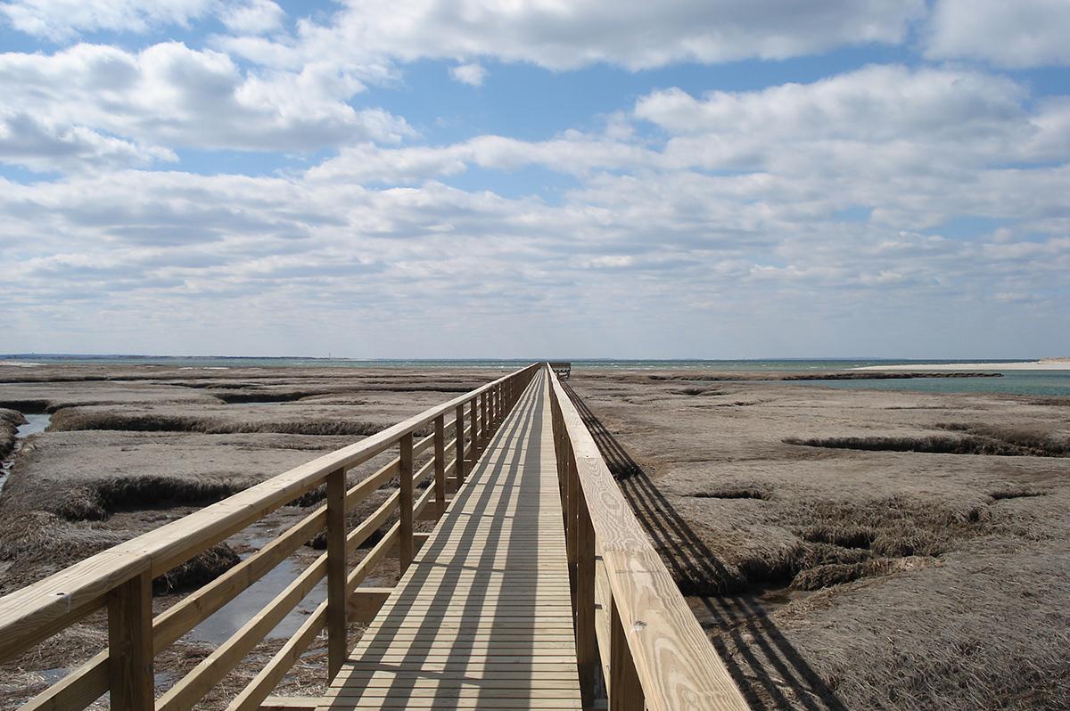 Bass-Hole-Boardwalk-Grays-Beach-Cape-Cod-MA-Yamouthport