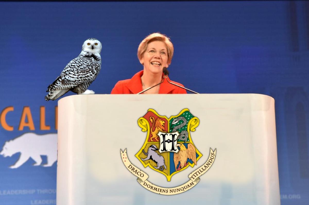 Elizabeth Warren Harry Potter character
