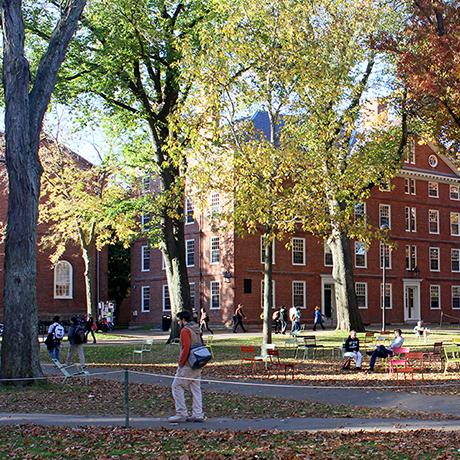 harvard university harvard yard-sq