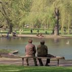 good-will-hunting-public-garden-sq