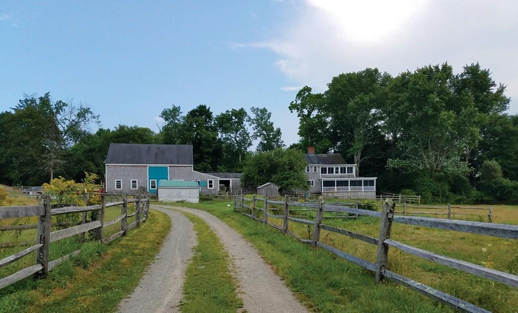 walpole farm