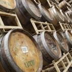 Barrels at Jack's Abby