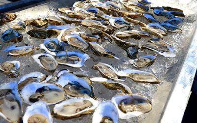 Wellfleet OysterFest 2015 photo by Flickr user PilotGirl / Creative Commons