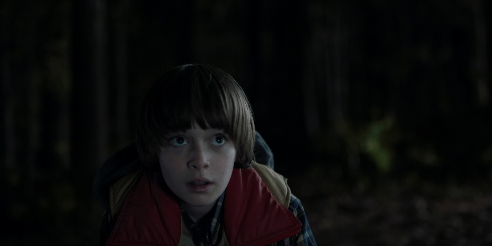 Noah Schnapp in 'Stranger Things'